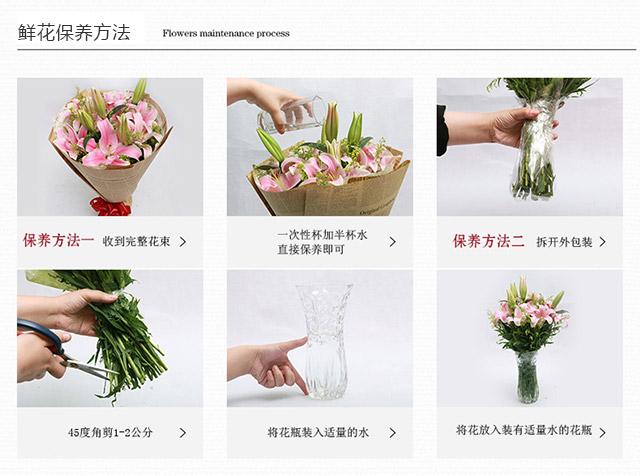 鲜花保养方法配图