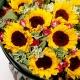 父爱如山-11朵向日葵,高山积雪点缀送长辈鲜花