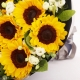 一声问候-10枝向日葵,搭配桔梗、点缀栀子叶