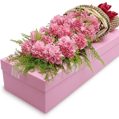 美好祝福-19枝粉康乃馨,搭配满天星礼盒
