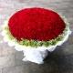 一生爱你-520枝精品红玫瑰,外围黄莺满天星