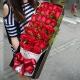 天天爱你-33枝红玫瑰,间插情人草,高档礼盒