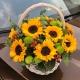 一花一恋-9枝向日葵,搭配小雏菊,尤加利、红豆、绿叶点缀
