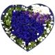 心有所属-19枝蓝玫瑰,2只公仔熊,外围栀子叶满天星,勿忘我点缀